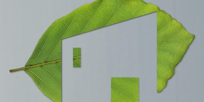 Ritorno alla Natura - Piste dei tetti con la protezione delle radici